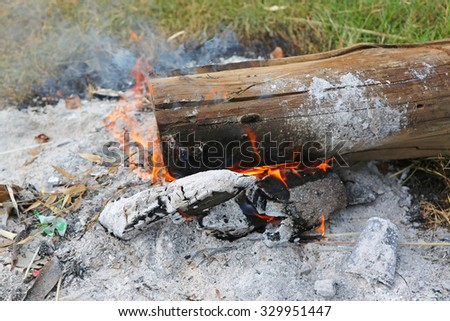 Fire on wood trunk - stock photo
