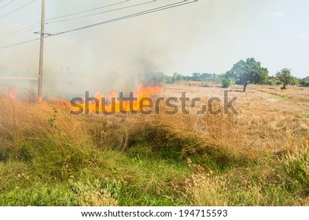 Fire was burning straw - stock photo