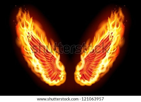 Fire wings - stock photo