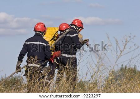 firemen team putting out bush fire - stock photo