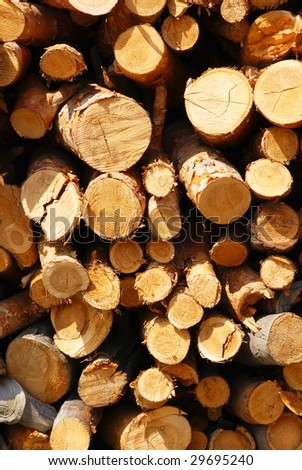 Firewood combined in a woodpile - stock photo