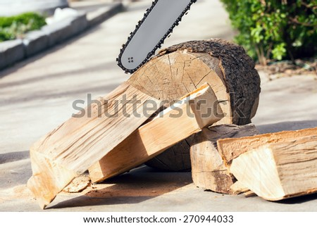 Firewood cut with a chainsaw - stock photo