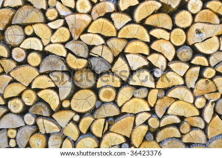 firewood slicing - stock photo