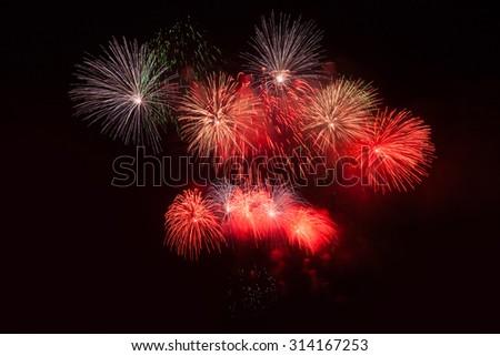 Firework in the night sky - stock photo