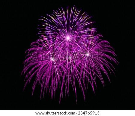Firework or fire flower   in celebration night - stock photo