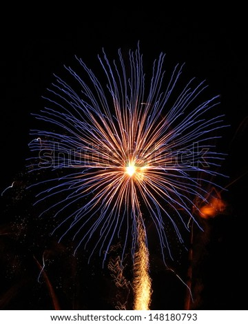 Fireworks flower in black sky - stock photo