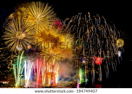 Fireworks in the sky in the night - stock photo