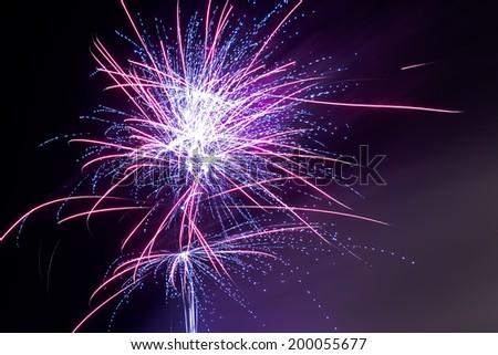 Fireworks - Purple Haze - stock photo