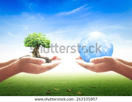 First, human hands holding medium plant or big tree. Second, human hands holding blue planet over beautiful nature background. Ecology World Environment Day Eco Friendly CSR Earth Day Trust concept. - stock photo