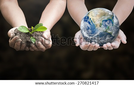 First, human hands holding young plant. Second, human hands holding planet over nature background. Ecology concept. Elements of this image furnished by NASA. - stock photo