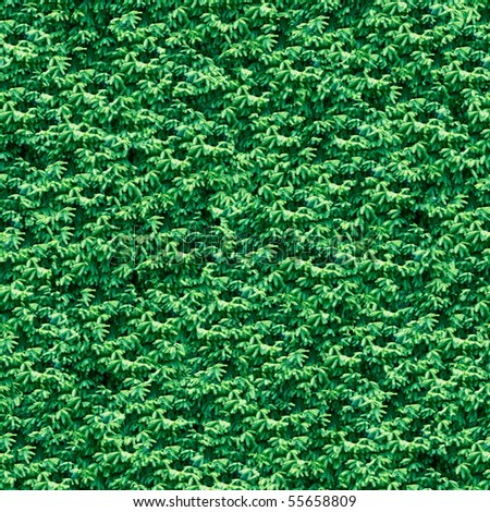 Firtree seamless background. (Seamless pattern for  continuous replicate). - stock photo