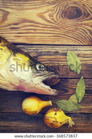 Fish a river pike perch on a wooden board with bay leaf, onions, pepper. Preparation of fish soup. Raw fish close up on a cutting board, pike perch. - stock photo