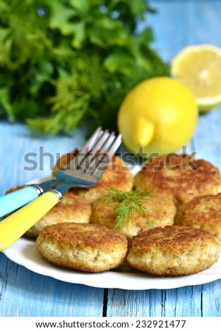Fish cutlets on a white plate. - stock photo