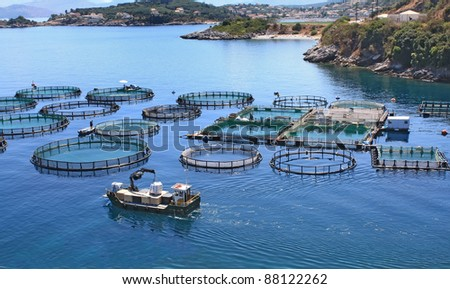 freshwater fish farming how to begin