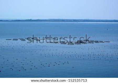 Fish farm in Adriatic sea, Italy, Europe. - stock photo