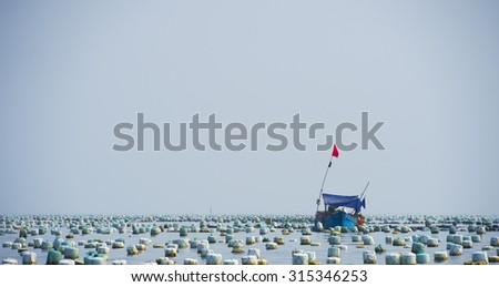 Fish farm in sea                - stock photo