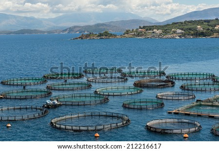 fish farm on Corfu island, Greece - stock photo
