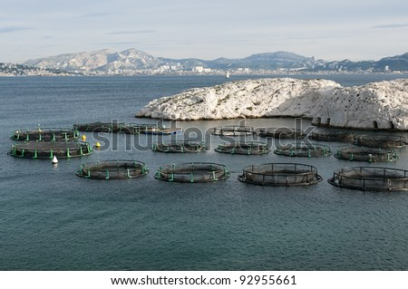 Fish farm on Frioul islands, Provence, France - stock photo