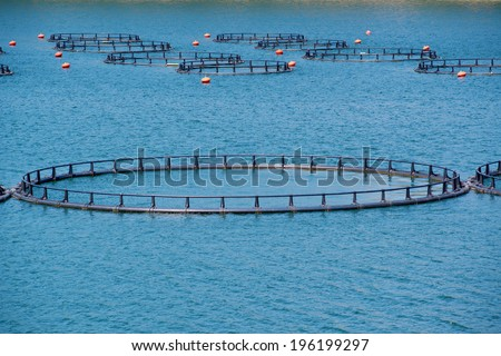 Fish Farm with floating cages - stock photo