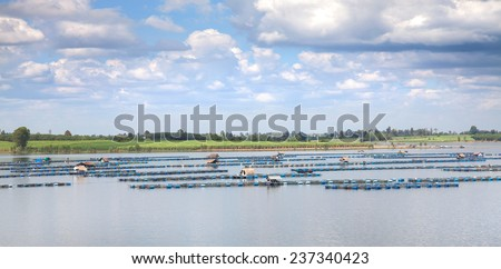 fish farming at the dam Thailand - stock photo