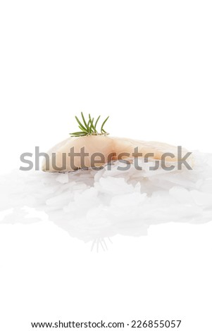 Fish fillet with fresh rosemary on ice isolated on white background. Delicious culinary fish fillet eating. Perch fish. - stock photo