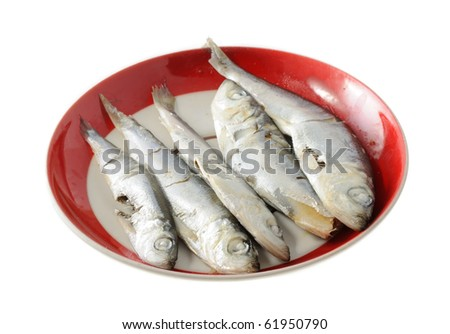 Fish for Cat - stock photo
