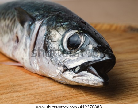Fish head detail. A delicious and healthy meal. - stock photo