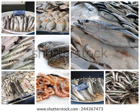 Fish in a market  - stock photo