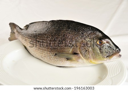 fish in a plate - stock photo