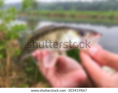 Fish in hands. blurred Background - stock photo