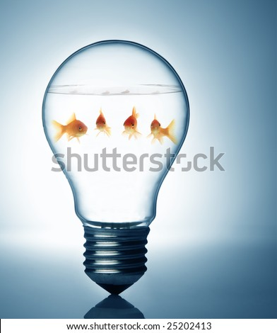 fish in the bulb - stock photo