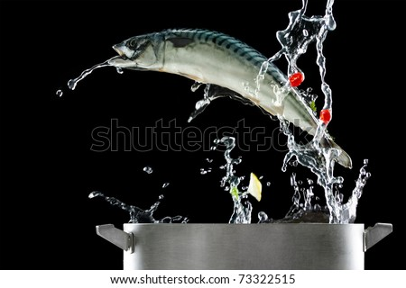 Fish jumping out of pat - stock photo