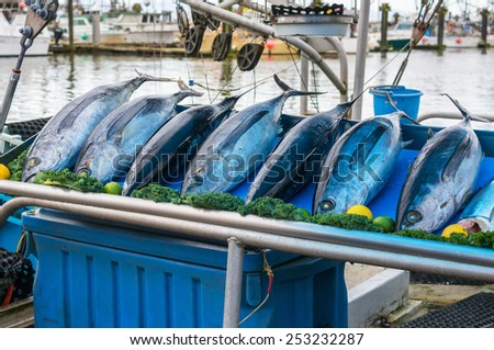 Fish Market in Steveston Village, Richmond, BC, Canada. - stock photo