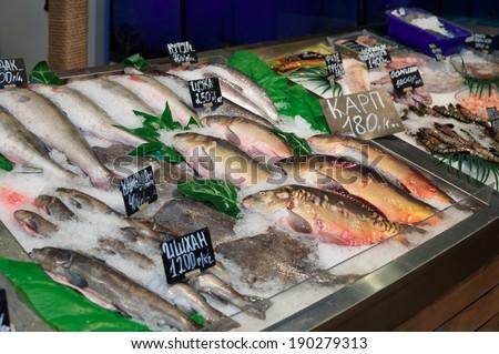 Fish on iced market display - stock photo