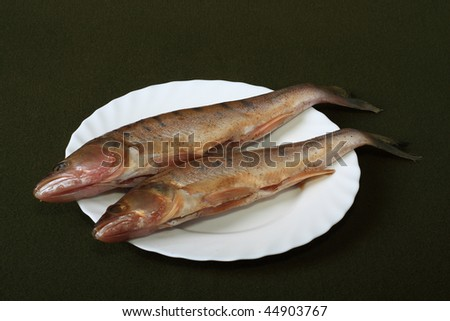 Fish very useful and important element in a food allowance - stock photo