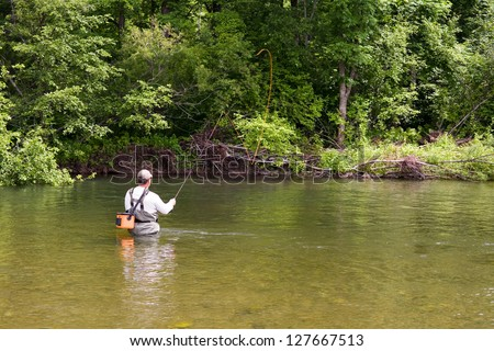 Fisherman catches of salmon fly fishing in the river. - stock photo