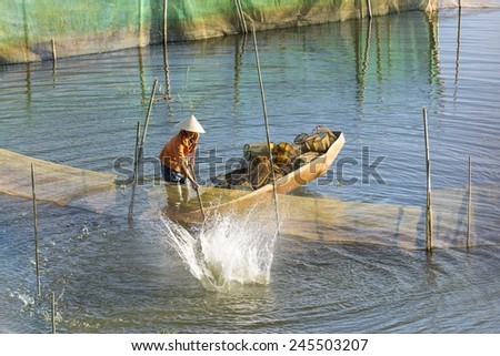 Fisherman drives fishes to trap net with the pole - stock photo