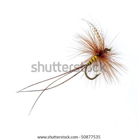fishhook - stock photo