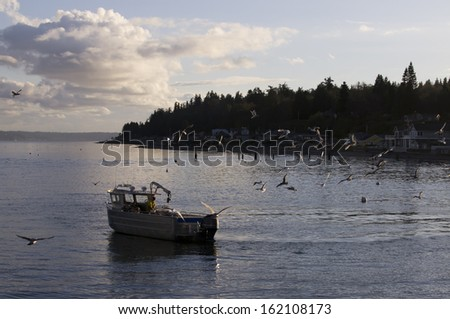 Puget sound stock photos images pictures shutterstock for Puget sound fishing