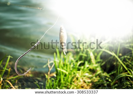 Fishing hook on lake and fish background - stock photo