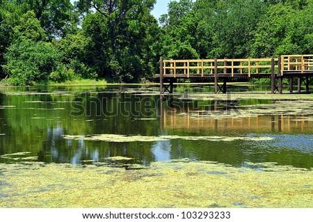 Fishing Pier Over Southern Louisiana Swamp - stock photo