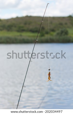 Fishing pole with bait against lake and beautiful sky - stock photo
