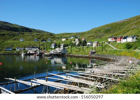 Fishing village is located on the side of blue fjord. Soroya is photographed in summer. There are wooden houses on the green mossy hill and empty wooden rackes for dried cod. - stock photo