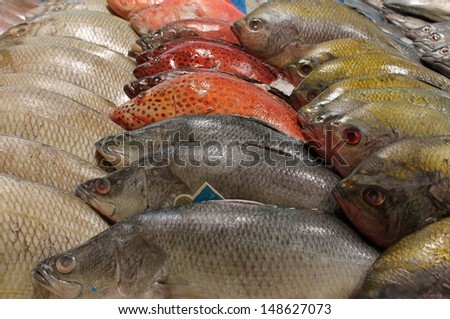 Fishmonger stall in the market - stock photo