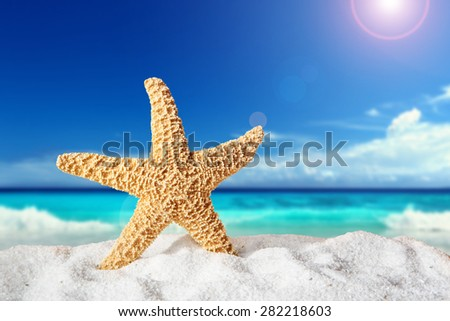 fishstar on the sandy beach. Holiday concept - stock photo