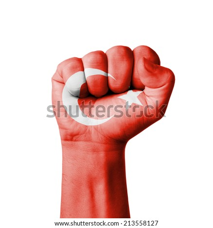 Fist of Turkey flag painted - stock photo