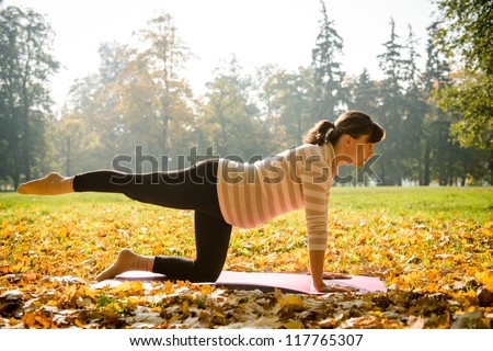 Fitness pregnant woman exercising outdoor in autumn nature - stock photo