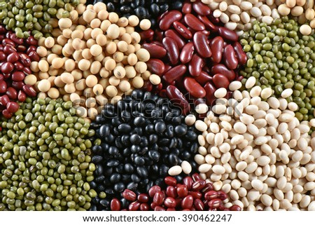Five color bean for healthy - stock photo