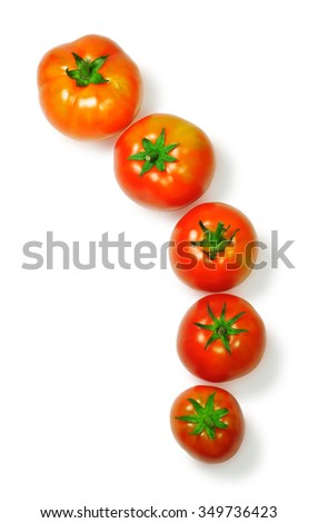 Five orange tomatoes of different sizes, placed in a row, isolated on white background
