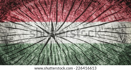 flag of Hungary on cracked wooden texture - stock photo